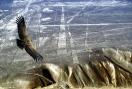 Перу - Древните империи на Южна Америка - 10HB (от София)/ 16.03, 17.11 РАННИ ЗАПИСВАНИЯ